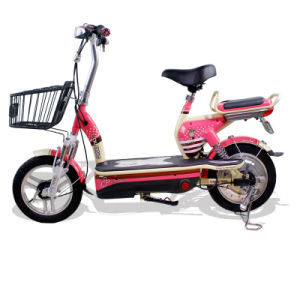 Bright and Colorful E-Bicycle