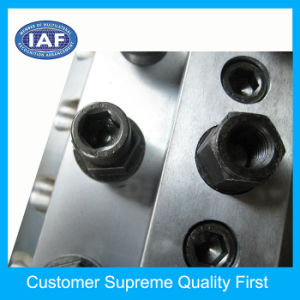 Mould Making Custom Extrusion Mould pictures & photos
