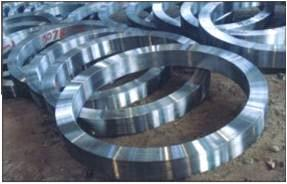 High Quality Forged Marine Flange pictures & photos