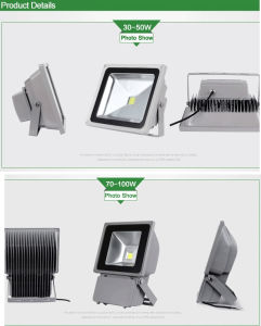 Top Quality 50W 2 Years Warranty LED Floodlight pictures & photos