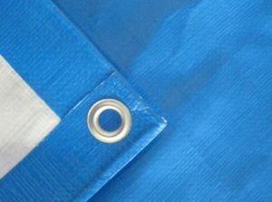 HDPE Tarpaulin Sheet pictures & photos