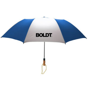 Cheap Cost Umbrella for Promotional Standard Umbrella with Different Size pictures & photos