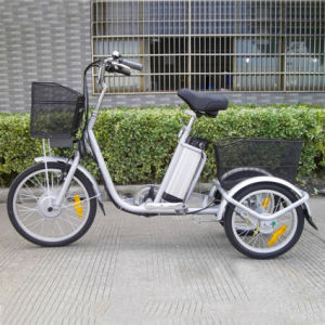 3 Wheel Electric Trike Made in China pictures & photos