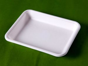 Biodegradable Tray (T023)