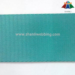 Top Grade 2 Inch Nylon Webbing for Amusement Equipment pictures & photos