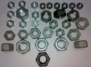 Stainless Steel Nuts pictures & photos