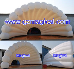 Modern White Shell Shape Inflatable Cover (MIC-167) pictures & photos