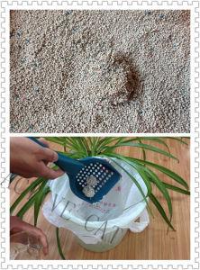Bentonite Clumping Cat Litter pictures & photos