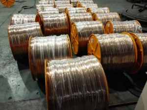 Copper Clad Stranded Wire pictures & photos