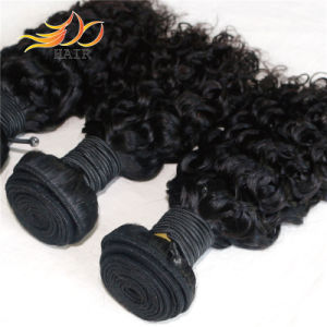 8A High Quality Indian Virgin Human Hair pictures & photos