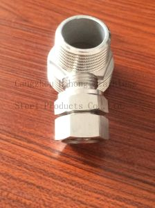 Stainless Steel Pipe Fittings Nipple From Hex Bar pictures & photos