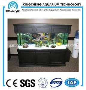 Professional Custom Aquarium pictures & photos