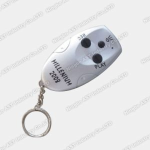 Promotional Keychains, Sound Keychain, Digital Keychain pictures & photos