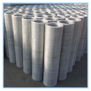 Top Quality Stainless Steel Crimped Wire Mesh / Woven Wire Mesh Manufacture (Factory Sale)