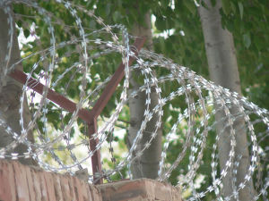 Concertina Hot-DIP Galvanized Razor Barbed Wire pictures & photos