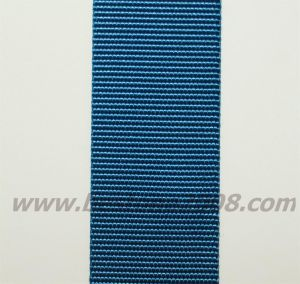 Factory Manufactured Nylon Webbing for Lanyard#1501-02b pictures & photos