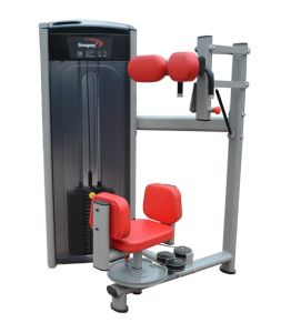 Fitness Equipment / Gym Equipment / Torso Rotation (SA21) pictures & photos