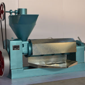 6yl-105 Oil Press Machine pictures & photos