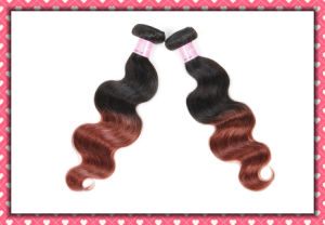 Hot Sale Peruvian Human Hair Body Wave Ombre Color 22inches pictures & photos