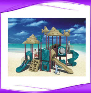 CE Certificate LLDPE Material Kids Playground (2243A)