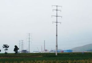 High Quality Steel Tube Tower