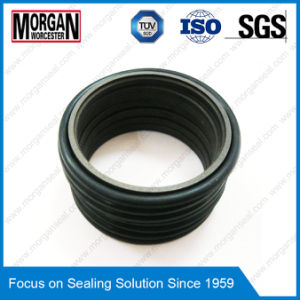 Full Size PTFE/FKM/PU/ POM/PA/NBR Hydraulic Seals pictures & photos
