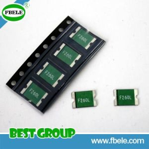 (1206, 2920) Glass Tube Fuse SMD Fuse pictures & photos