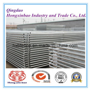 Chain Link Temporary Fence/Hot DIP Galvanized Welded Wire Mesh Temporary Fence pictures & photos