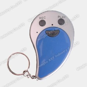 Keychain, Voice Keychain, Recordable Keychains pictures & photos