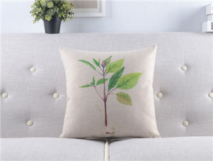 Fresh Vanilla Cotton American Country Plant Sofa Decorative Cushion Pillow pictures & photos
