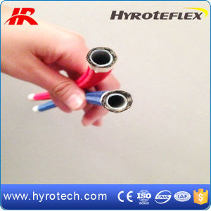 Manufacturer of Spiral Teflon Hose and Hydrualic Hose pictures & photos