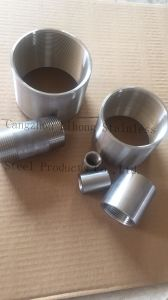 Stainless Steel BSP / DIN2999 Pipe Fittings Coupling in Stock pictures & photos