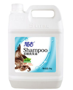 Natural Vital Care Shampoo Series with Plant Exacts 5kg (SP006) pictures & photos