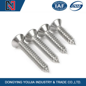 Carbon Steel Cross Recessed Countersunk Head Wood Screw pictures & photos
