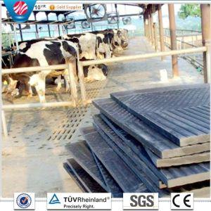 Supply Stable Rubber Mat Cow Horse Rubber Mat Animal Rubber Mat Agriculture Rubber Matting pictures & photos