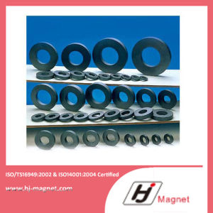 Various Customized Strong N35-N52 Ring Permanent Ferrite Magnet pictures & photos