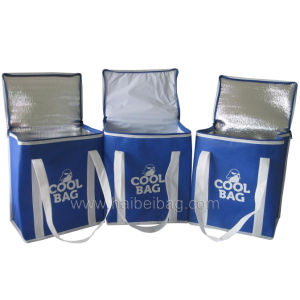 Eco Ice Cool Bag, Insulated Cooling Bag, Picnic Lunch Cooler Bag (HBCOO-12) pictures & photos