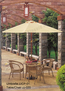 Outdoor Furniture, PE Rattan Furniture, (JJ-020TC) pictures & photos