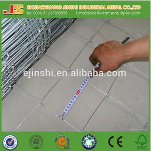 Galvanized Cattle Fence/Hinge Joint Fence/Goat Fence Made in China pictures & photos