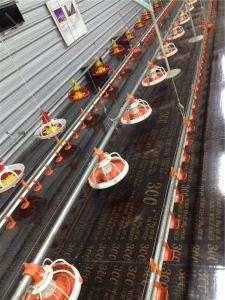 Broiler Poultry House /Chicken House with Full Set Automatic Equipment pictures & photos