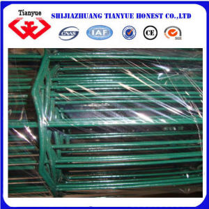 PVC Coated Welded Wire Mesh Panel (TYB-0047) pictures & photos