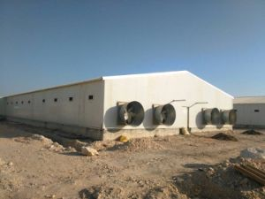 Poultry Farm Construction with Cold Storage and Making Food Machinery pictures & photos