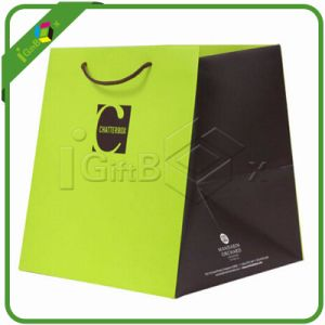 Eco-Friendly High Quality Printed Paper Shopping Bags pictures & photos