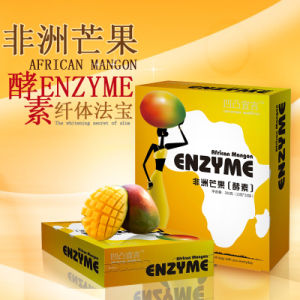 Best Detox &Weight Loss African Mango Slimming Enzyme Supplier