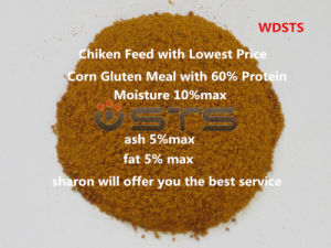 High Quality Corn Gluten Meal for Chicken Feed pictures & photos