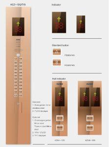 Titanium Hairline Stainless Villa Elevator pictures & photos
