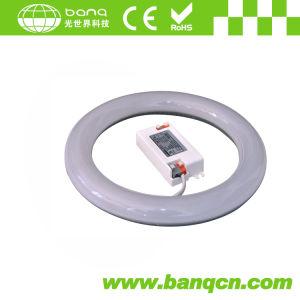 22 Watt T9 LED Tube (T9-T30CM-168X3014-W)