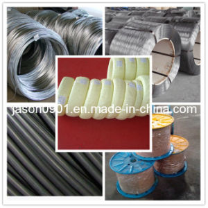 Galvanized Steel Wire pictures & photos
