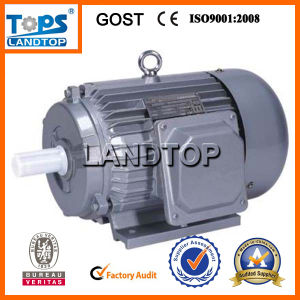 Y Series Three-phase 380V AC Electrical Motor pictures & photos