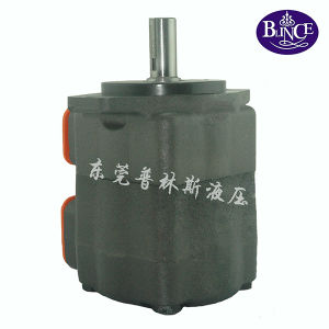 China Hydraulic Engine Pump Parts with High Pressure pictures & photos